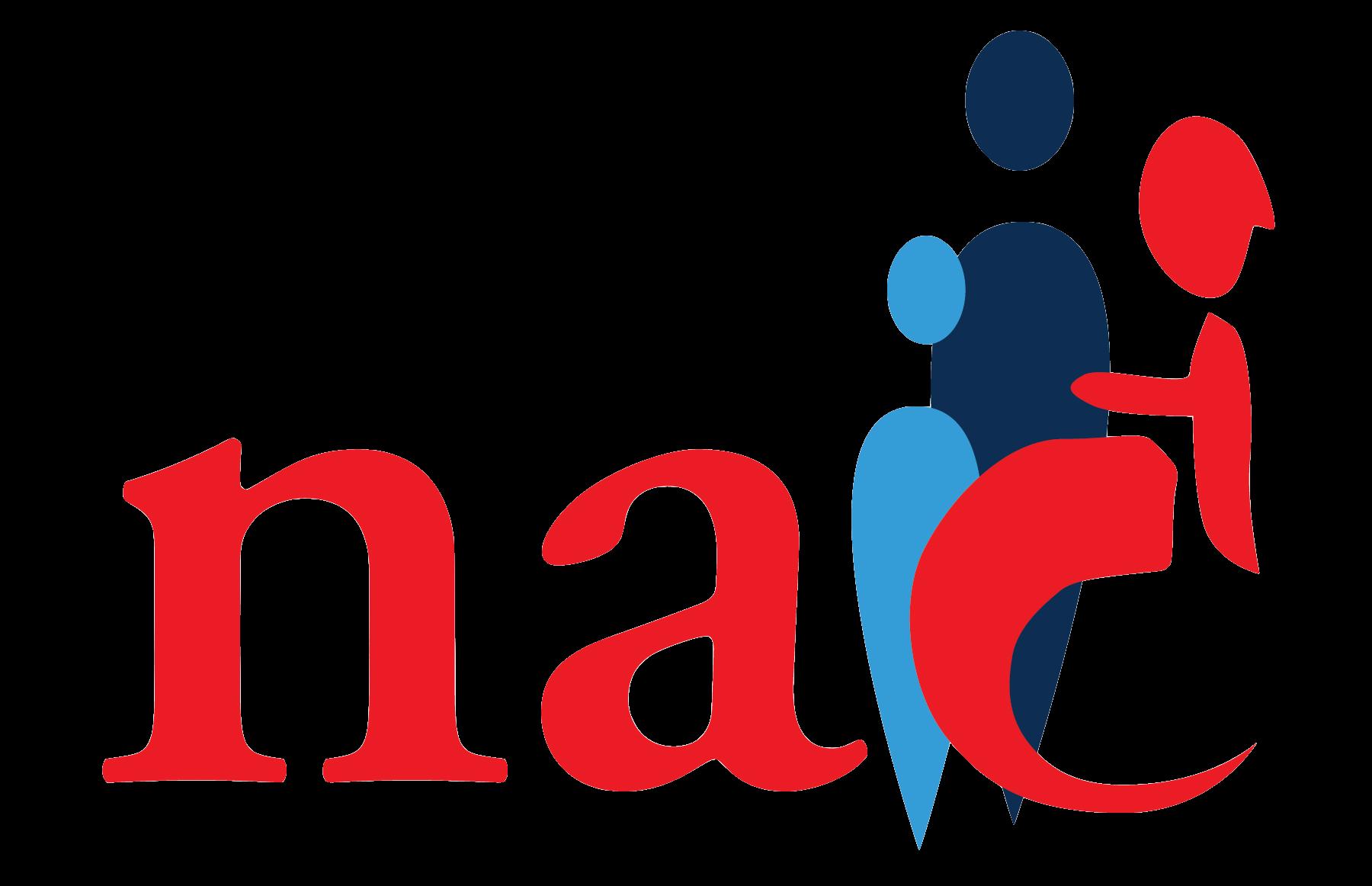 NAIC-Logo-Rectangle