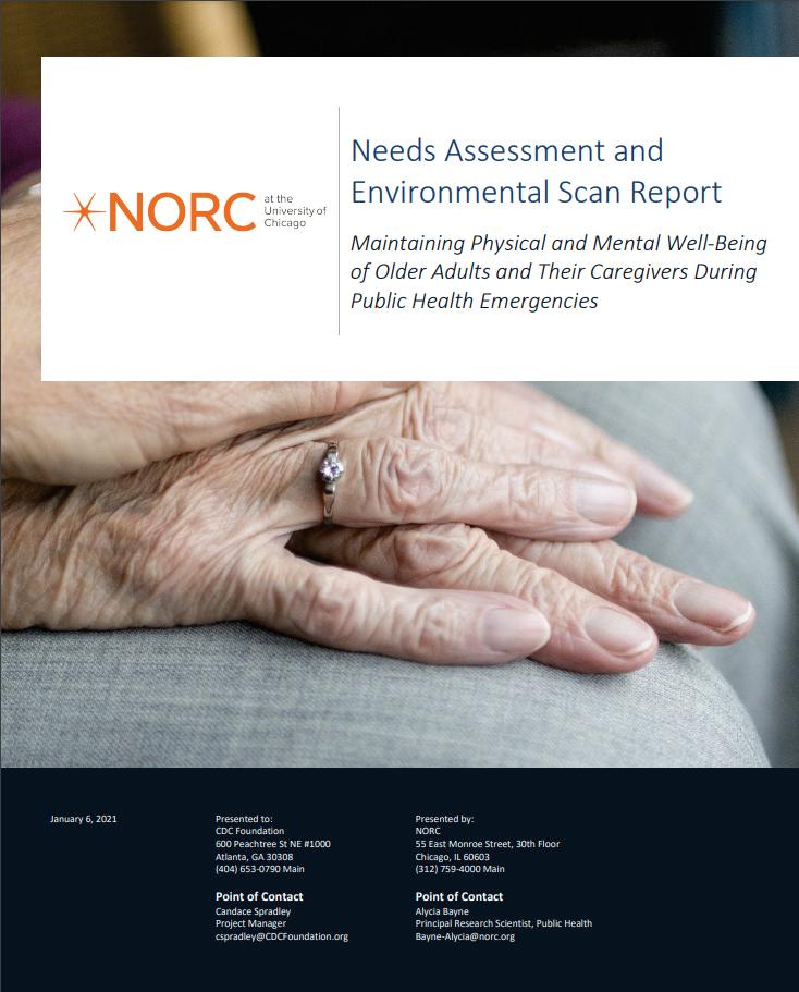 Needs Assessment & Environmental Scan Report
